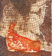 Laura Beyer, Orange Net