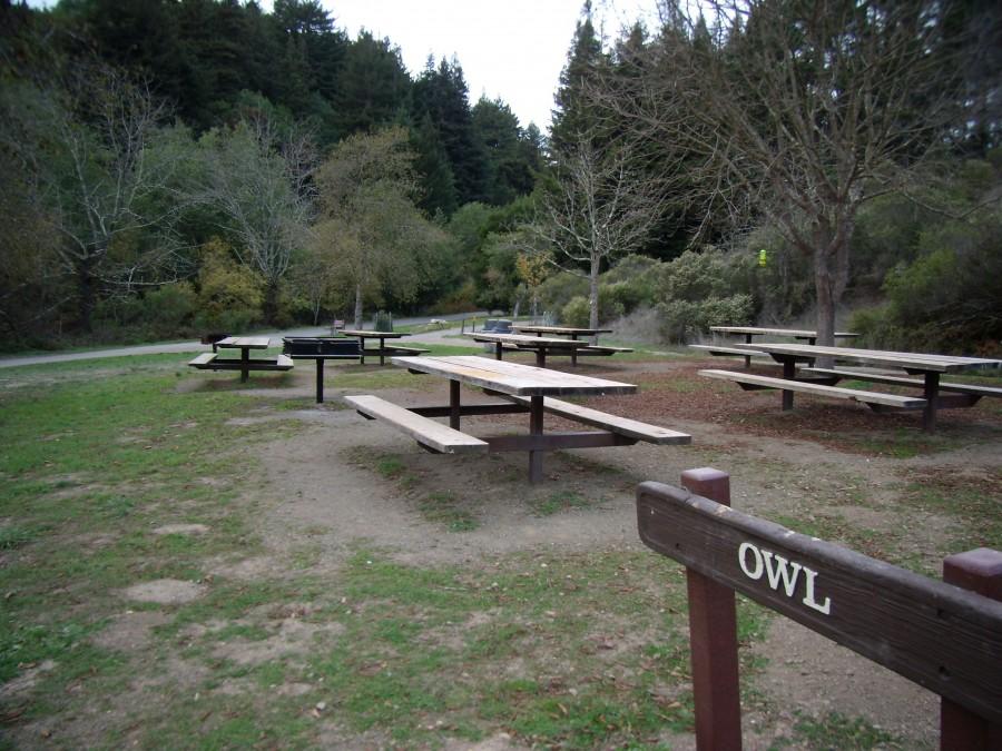 Owl Picnic Area