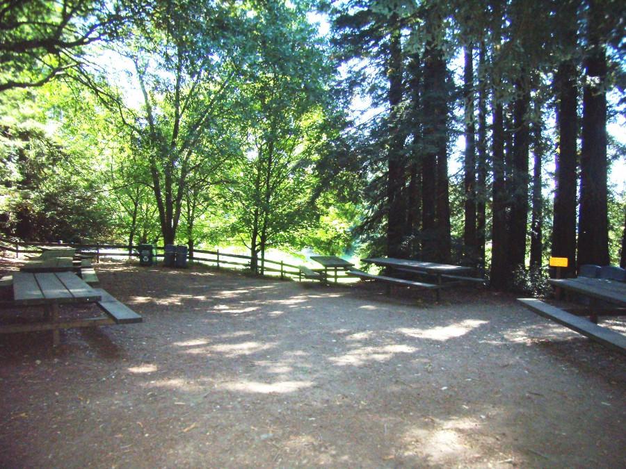 Bay Vista Picnic Area