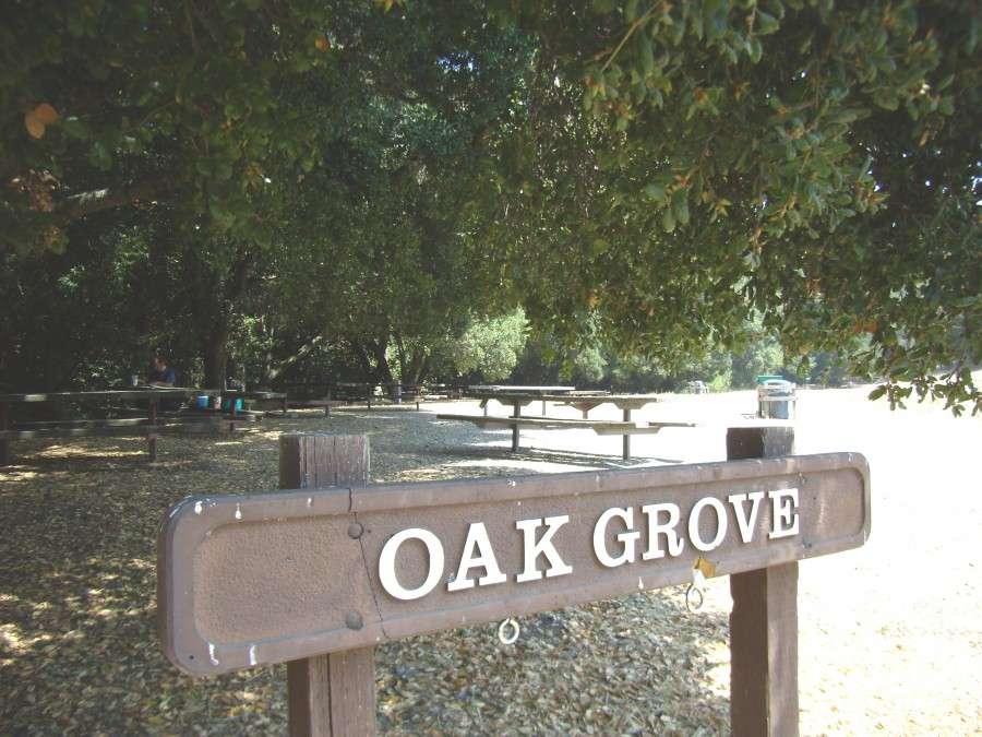 Oak Grove Picnic Area