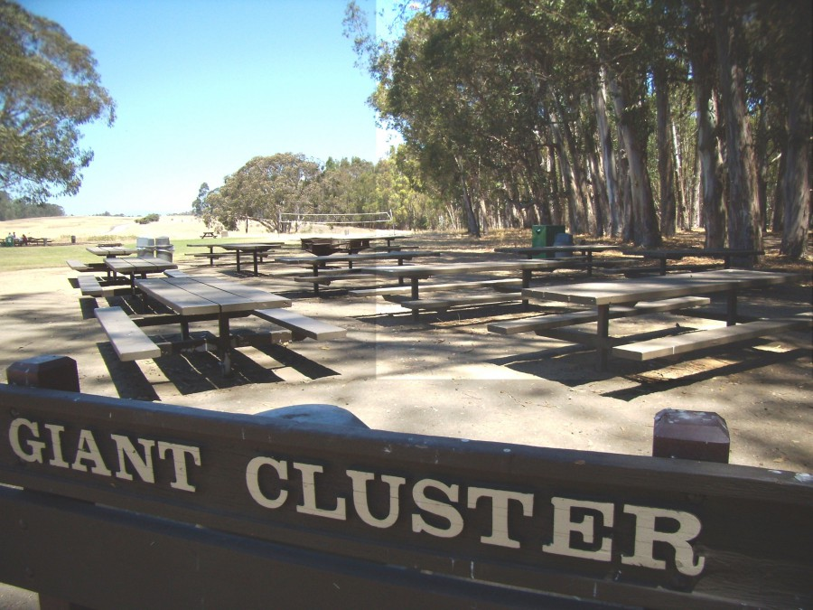 Giant Cluster Picnic Area