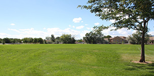 Dixson Park Multipurpose Field
