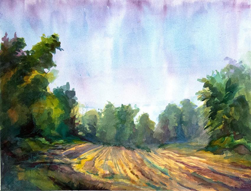 Deena Ball Landscape