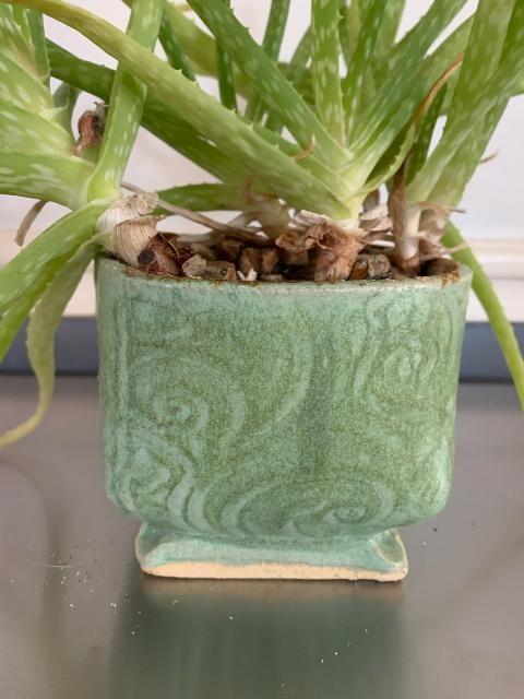Susan Branco Ceramics